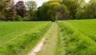 Holle weg richting Ootmarsum