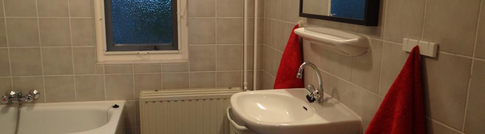 vakantiehuis twente badkamer